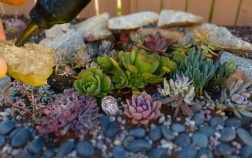 How To Glue Rocks Together For Landscaping